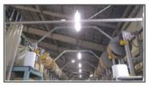 2020 省エネルギー設備LEDライトの導入 改善後(倉庫)